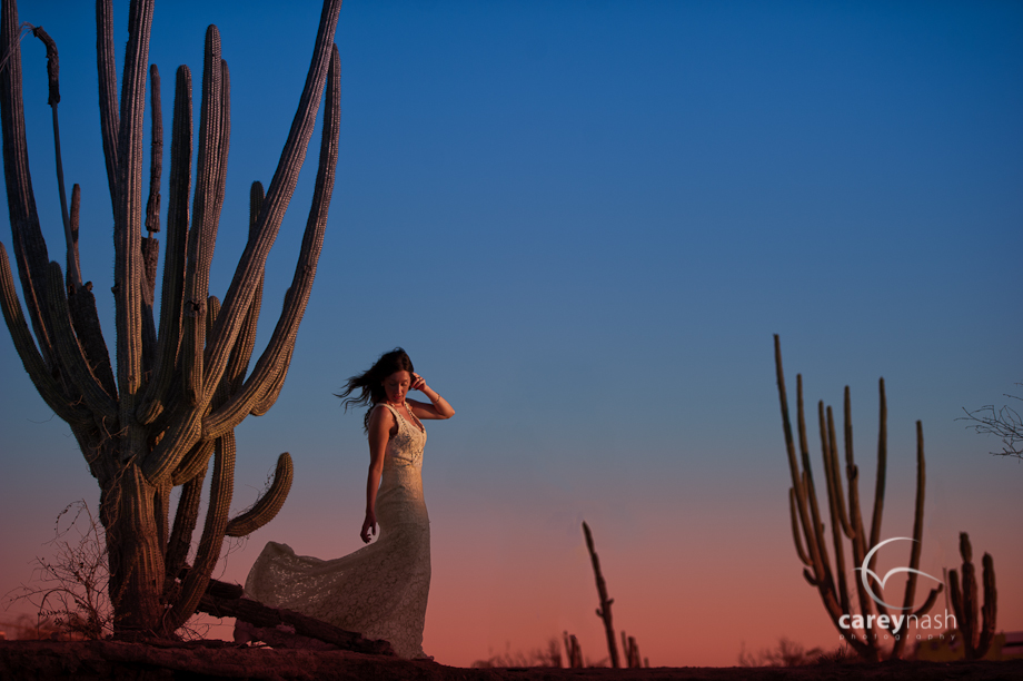 desert luxury wedding -destination wedding - hamilton wedding - year in review 2013-8