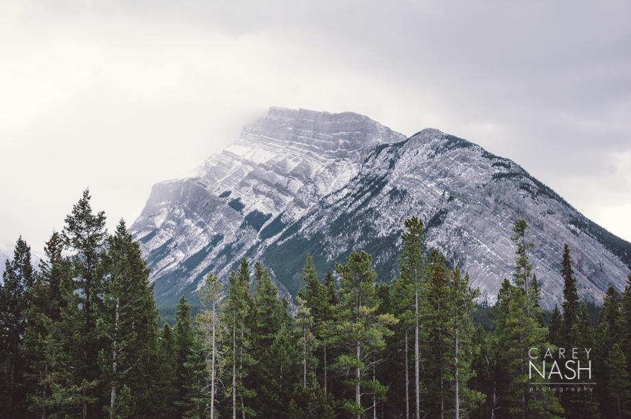 Rocky Mountauntain Wedding - Buffalo Mountain Lodge wedding - Luxury Mountain Wedding - Rock the dress-5