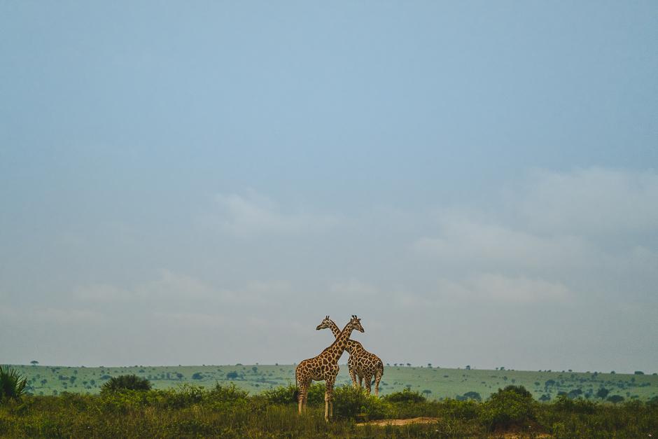 africa-wedding-uganda-wedding-luxury-wedding-1-of-111